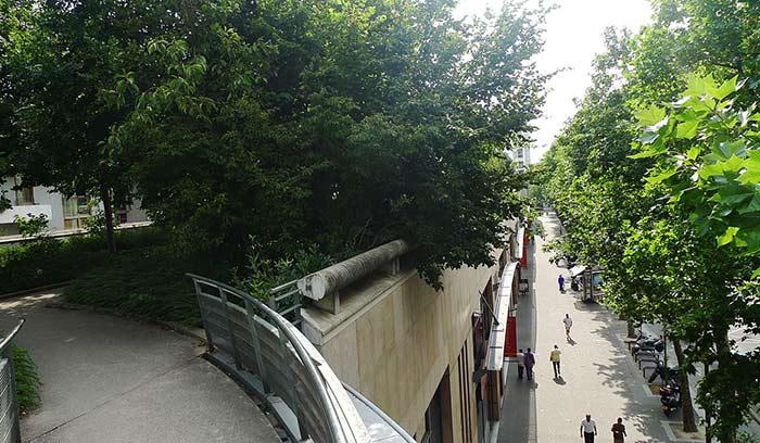Promenade Plantee Paris