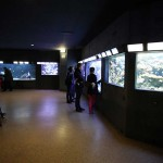 Aquarium Paris Porte Dorée