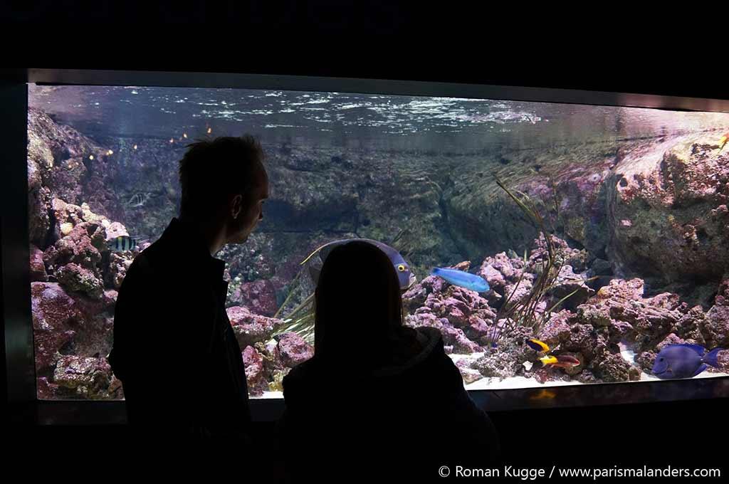 Zoo Paris Menagerie