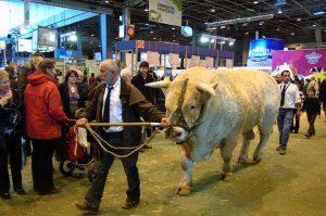 Salon de l'Agriculture Landwirtschaftsmesse Paris