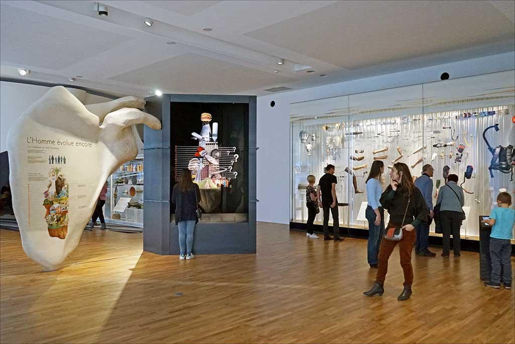 Musée de l'Homme in Paris Ausstellung