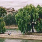 Spitze Ile de la Cité Square du Vert Galant